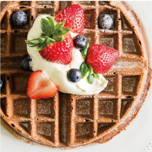 Chocolate Waffle with berry cream