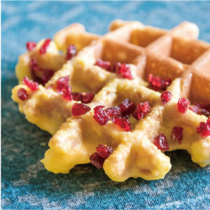 Coconut Cranberry Waffle